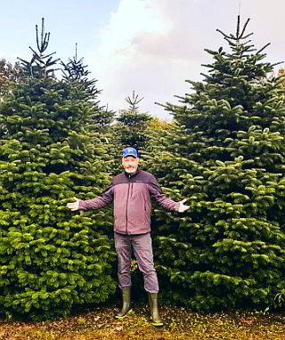 Weihnachtsbaum Berlin.Tannenquelle De Weihnachtsbaum Handel Berlin Zehlendorf Steglitz